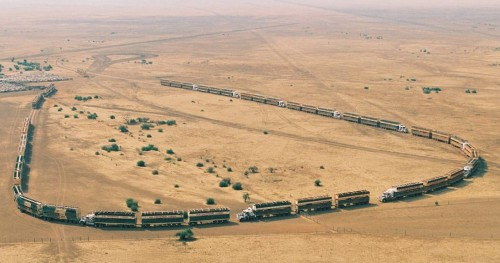 moving-cattle-in-australia-road-trains